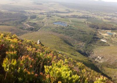 reinette-rathbone-mountains